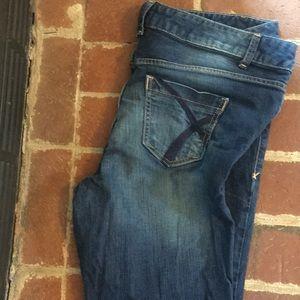 Lane Bryant women's jean